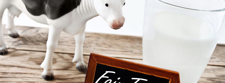 Milch - Milk - Fair Trade