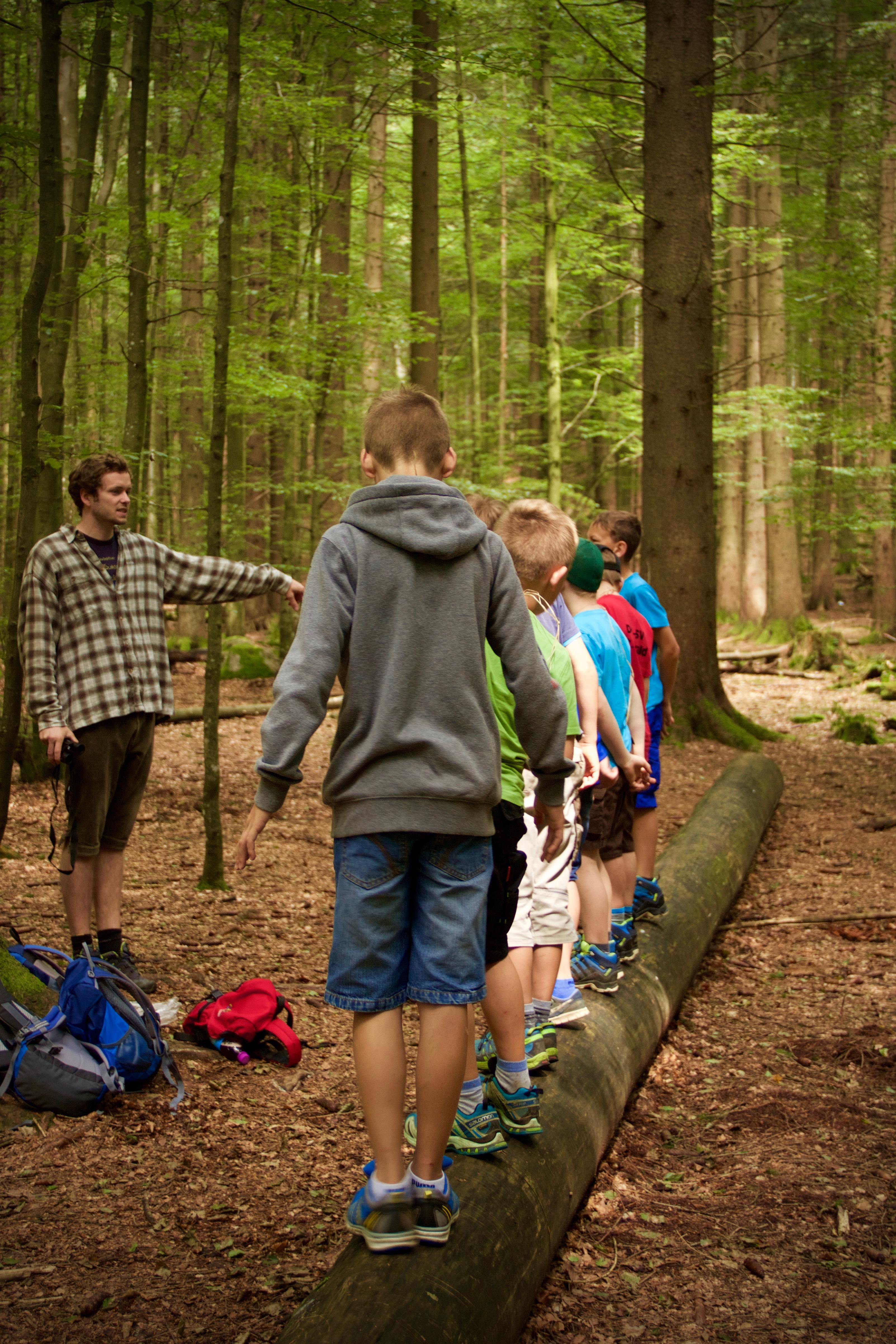 Die Bildungsarbeit mit Kindern, wie hier im Waldspielgelände bei Spiegelau, gehört zu den Aufgabenschwerpunkten der Commerzbank-Umweltpraktikanten (Foto: Irene Gianordoli/Nationalpark Bayerischer Wald)