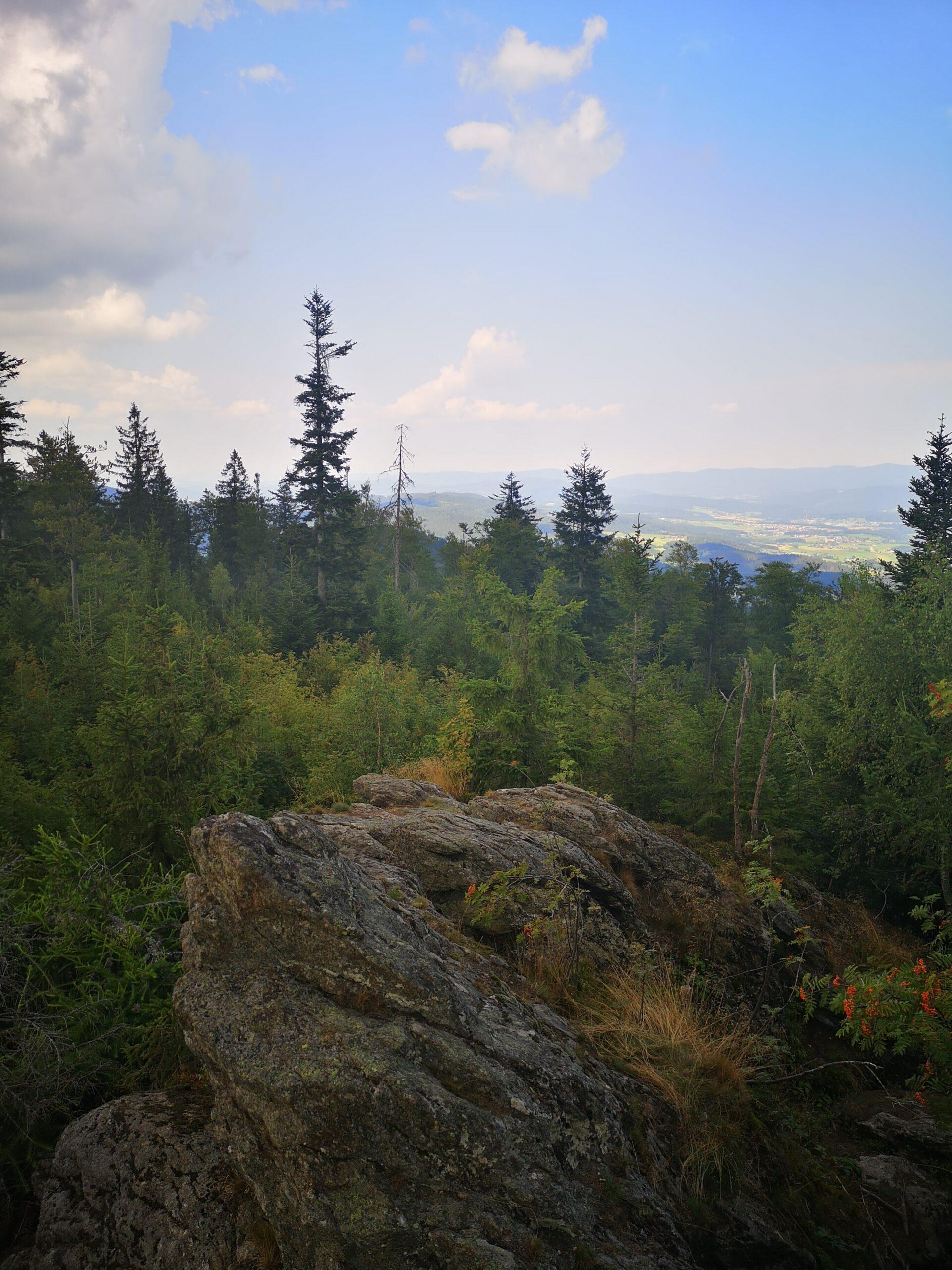 Blick vom Klosterstein in den Inneren Bayerischen Wald Bildautor: Lea Stier, Naturpark Bayerischer Wald e.V.